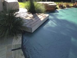 Green leaf cover on pool with jetty
